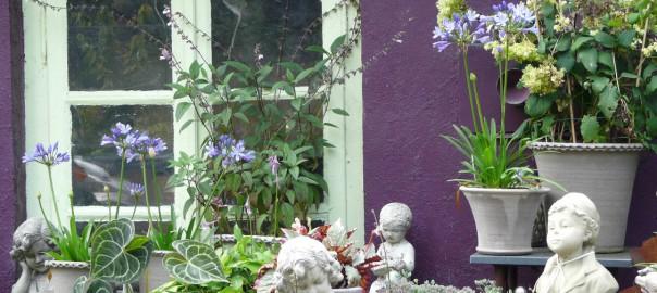 Wiesenraute Siegen gärten im nördlichen rheinland birgit fellecke gartenpfade de