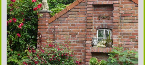 Wiesenraute Siegen sommerfrische in friesland birgit fellecke gartenpfade de